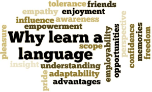 Why Learn a Language (credit: uncp.edu)