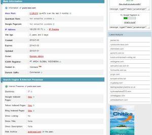 Riwayat Kunjungan Laman puisi-esai.com via Sahlul Fuad